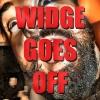widgesm.jpg