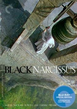 black-narcissus-bd